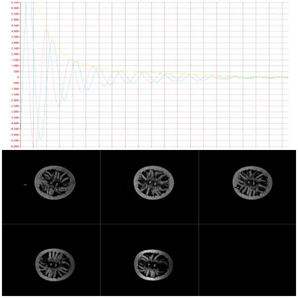 MRI & NMR Analysis In Lemon