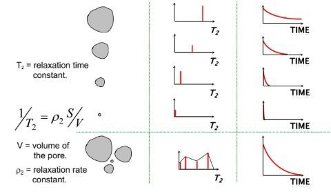 Porosity 孔隙度分析