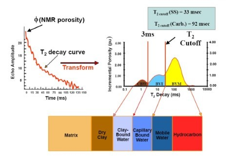 Saturation 飽和度量測分析